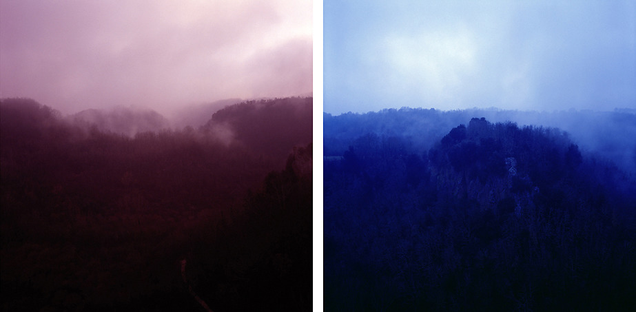Red & Blue Forest, #3, #4