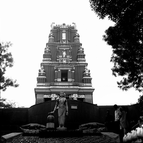 Temple (BW #5)
